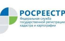 Заместитель начальника  территориального отдела  № 4  филиала Федеральной кадастровой палаты Росреестра по Челябинской области