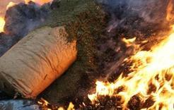 Вещественные доказательства сгорели в огне