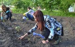 В Коркино прошёл экологический субботник