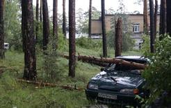 Ураган на Ильменке унёс жизни трёх человек