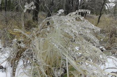МЧС предупреждает: грядёт новый ледяной дождь