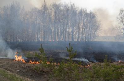 Пожароопасный сезон обещает быть сложным