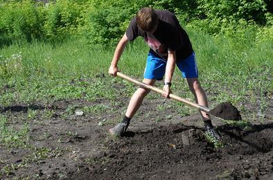 В Коркино трудоустроят более трёхсот подростков