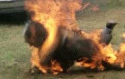 В Еманжелинском районе подожгли человека
