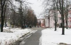 В администрации Коркино говорили о паводке и обращениях жителей