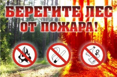В лесах области установлен пожароопасный сезон