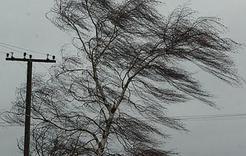 МЧС предупреждает южноуральцев о штормовом ветре