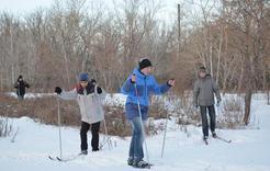 В парке Коркино теперь можно прокатиться на лыжах
