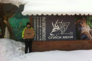 Школьники Коркино помогают животным