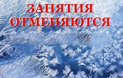Сегодня в Коркино отменили занятия для первоклассников