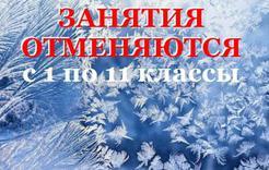 В Коркино отменены занятия для школьников в обе смены