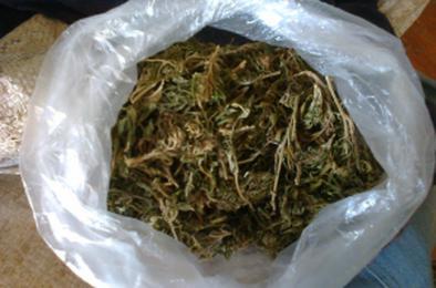 В Коркино возбуждено 4 уголовных дела по наркотикам