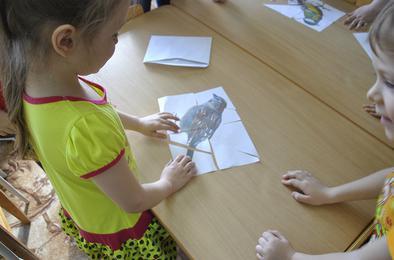 Коркинские детсадовцы стали юными орнитологами