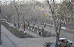 В Коркино от клещей обработали скверы центральных улиц