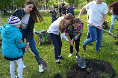 Коркинские студенты посадили деревья