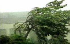 МЧС предупреждает южноуральцев о сильном ветре