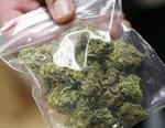 В Коркино задержаны двое с наркотиками