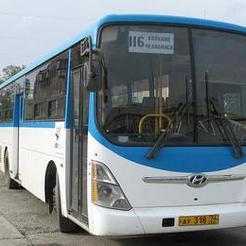 Как уехать и приехать: новогоднее расписание автобусов
