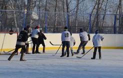 Розинские мальчишки сразились в хоккей за кубок главы