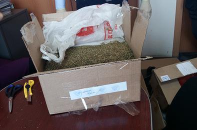 Коркинские полицейские уничтожили партию наркотиков
