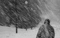 Завтра в регионе обещают сильный снег и метели