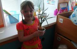 Детсадовцы Коркино защищаются от эпидемии луком