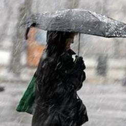 Сильный ветер и дождь: МЧС объявило предупреждение