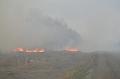 В Коркинском районе сгорел балкон, горят гектары травы