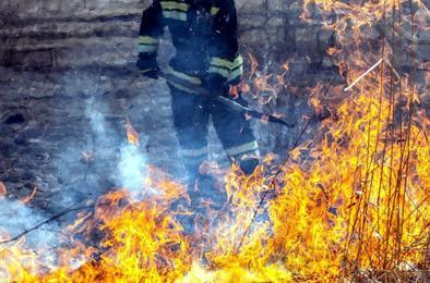 В посёлке Роза огонь от сухой травы подступил к жилым домам