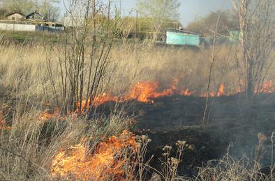 Вчера в Коркинском районе огонь вновь подступил к жилым домам