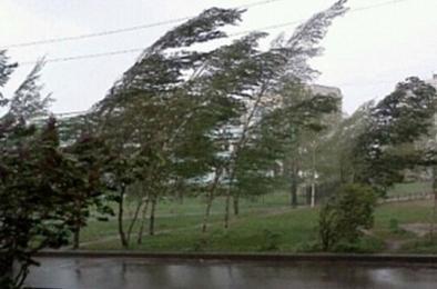 МЧС снова предупреждает южноуральцев о сильном ветре