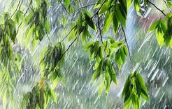 МЧС предупреждает южноуральцев о сильных дождях и грозах