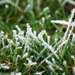 На Южном Урале прогнозируют первые заморозки