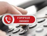 Центр занятости Коркино проводит «горячую линию»