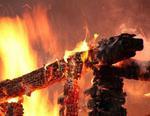 В Коркинском районе сгорел садовый домик