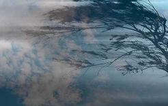 В ближайшие сутки на Южном Урале ожидается штормовой ветер