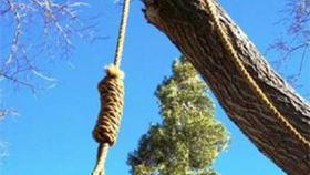 В лесу возле Коркино найдено тело неизвестного мужчины