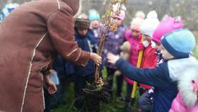 Дошколята Коркино посадили фруктовый сад на участке