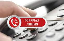 На «горячую линию» службы занятости поступили сотни звонков