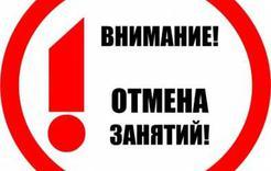 В Коркино отменены занятия для начальных классов