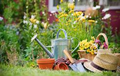 Коркинцев приглашают на лекцию о садоводстве
