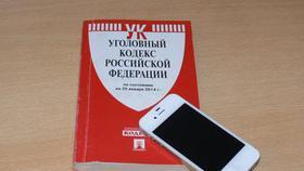 Коркинские полицейские раскрыли по горячим следам кражу телефона