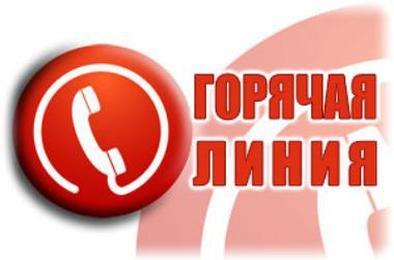 В коркинском центре занятости – «горячая линия»