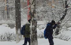 Нагрянувшая зима задержится на Южном Урале