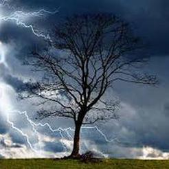На Южном Урале сегодня прогнозируют грозы и ветер