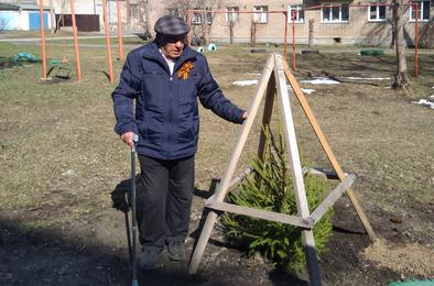 Помогли ветерану посадить елочку