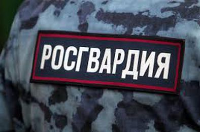 В Коркино росгвардейцы задержали хулиганов