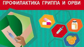 Роспотребнадзор области вводит карантин по гриппу с 24 января