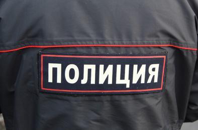 У жительницы Коркино украли телефон