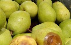 Коркинцы могут пожаловаться на качество продукции и сроки годности